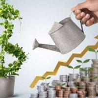 Invest Dominica